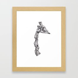 The Anatomy of a Giraffe Framed Art Print
