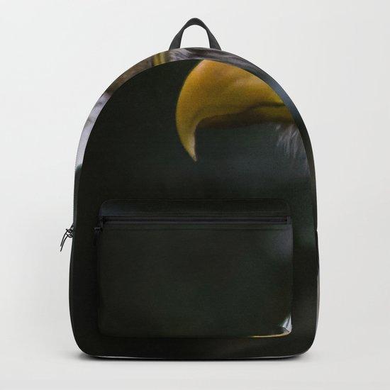 Eagle Eye Backpack