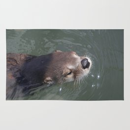 Otterly Adorable Rug