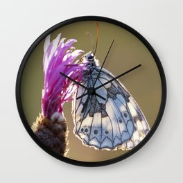 MARBLED WHITE BUTTERFLY ON KNAPWEED Wall Clock