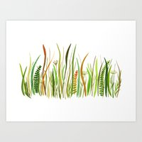 Prairie Watercolor by Robayre Art Print