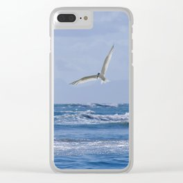 Terns diving into the sea Clear iPhone Case
