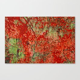 Abstract Red Rust on Green Paint Canvas Print