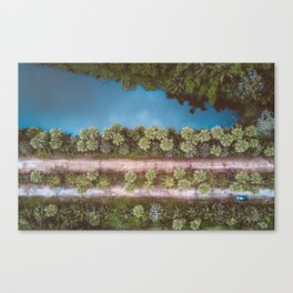 • Natures Recharge • Canvas Print
