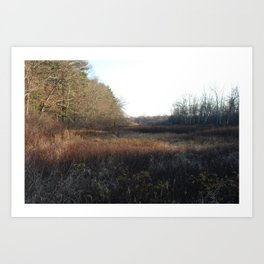 A meadow in winter in Massachusetts. Art Print