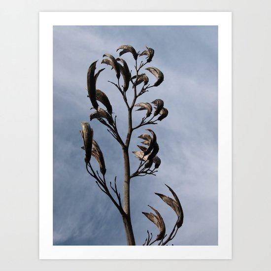 SCULPTURAL SEEDHEADS Art Print