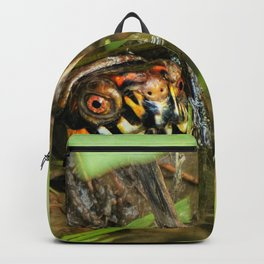 Box Turtle and Tadpoles Backpack