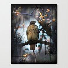 A Hawks Dream Canvas Print