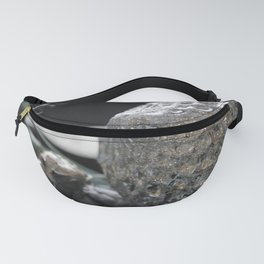 Ball and chain Fanny Pack