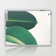 Rubber Fig Leaves II Laptop & iPad Skin