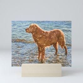 Brown Dog at Shore of Sea Mini Art Print
