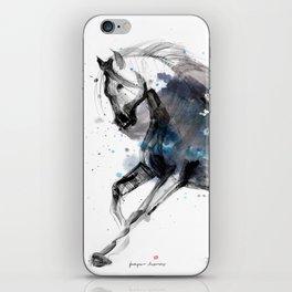 Horse (Storm) iPhone Skin