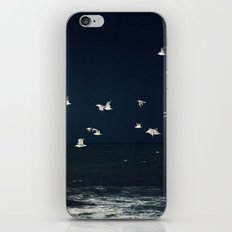 sea - evening flight iPhone Skin