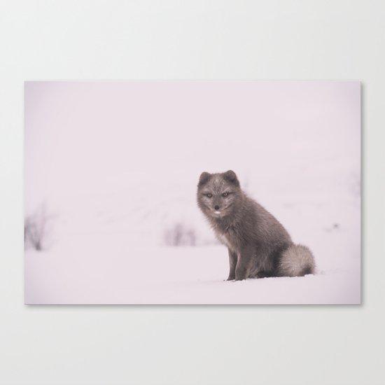 Snowy Sundays Canvas Print