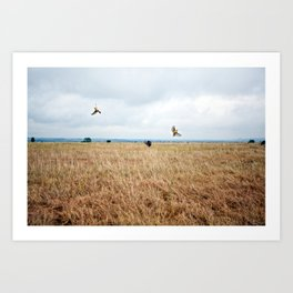 African Safari.  Art Print