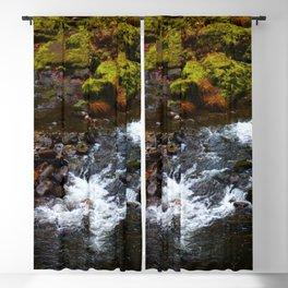 Fall Flow Blackout Curtain