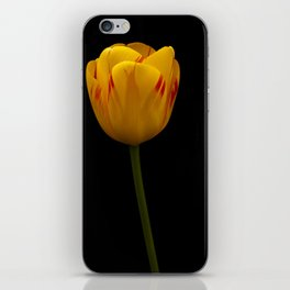 A Flaming Tulip iPhone Skin
