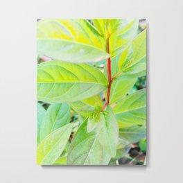 Happy Neon Green Fall Sapling Metal Print