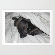sleeping bully Art Print