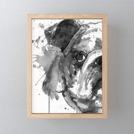 Black And White Half Faced English Bulldog Framed Mini Art Print