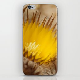 Desert Flower 159 iPhone Skin