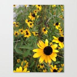 Flower Weather. Canvas Print
