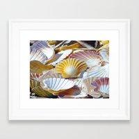 shells Framed Art Prints featuring Shells by jacqi