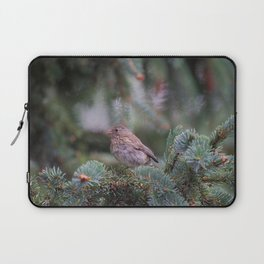Backyard Visitor ~ I Laptop Sleeve