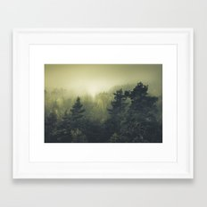 Forests never sleep Framed Art Print