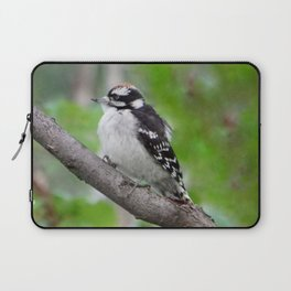 Downy Woodpecker (juvenile male) Laptop Sleeve