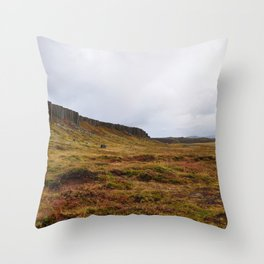 ICELAND TRAVEL: Gerud Basalt Landscape Throw Pillow