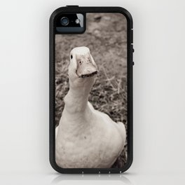 Gibson iPhone Case