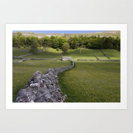 Meadows at Kettlewell, Yorkshire Dales, England Art Print