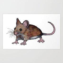 Brown Mouse, Oil Pastel Art, Little Critter Art Print