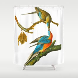 Passenger Pigeon Shower Curtain