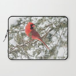Cardinal on a Snowy Cedar Branch (sq) Laptop Sleeve