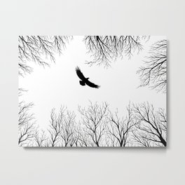 Eagle in the Sky Metal Print
