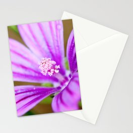 Mallow flower freshness Stationery Cards
