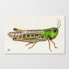 Grasshopper Leinwanddruck