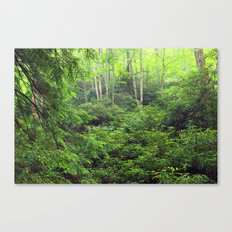 Forest 8 Canvas Print