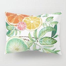 Citrus Fruit Pillow Sham