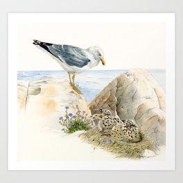 Seagull  - nesting bird on the Ligurian coast Art Print