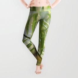 Tropic Dream Leggings