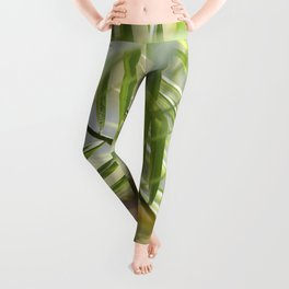 Tropic Dream Leggings