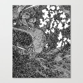 PNI005 | La pavo real de Strut | Limited Edition of 50 Prints Canvas Print