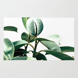 Green rapsody Rug