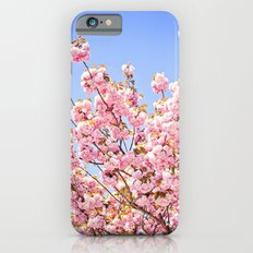 Pink Cherry Blossoms Against Blue Sky iPhone 6s Slim Case