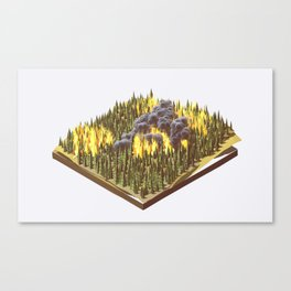 Wildfire Canvas Print