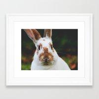 jojo Framed Art Prints featuring Jojo by lapinlune
