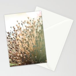 The Point Is.... Stationery Cards